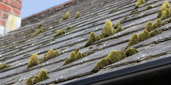 3 Common Roof Problems Seen In The Summer