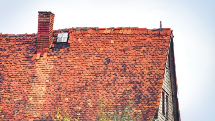 4 Signs Your Roof Might Be Leaking